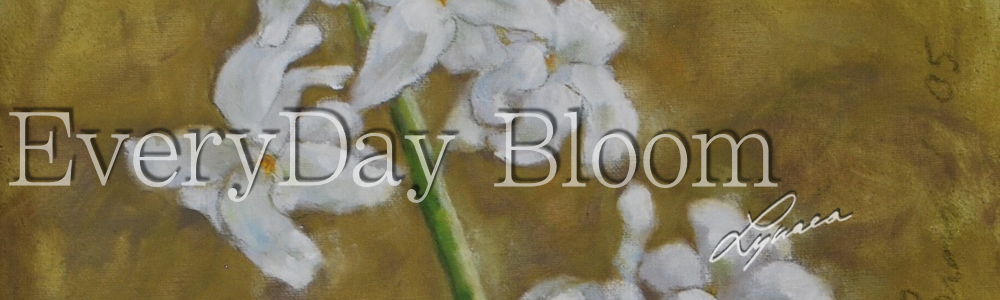everday_bloom_header_31